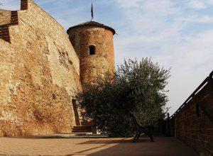 Castello Castelnuovo Calcea