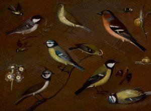 Orsola Caccia Natura morta d'uccelli
