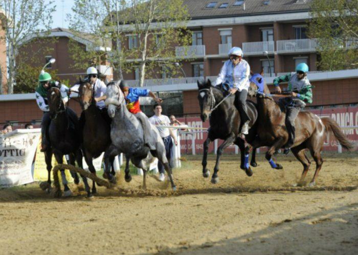 Cavalli in pista allo stadioDomenica si corre il Memorial Gambino