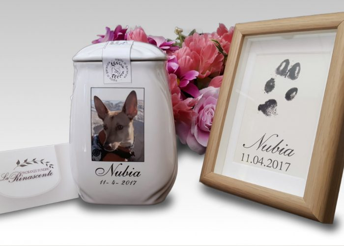 Onoranze funebri per animali