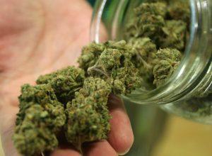 Teneva la marijuana nel suo congelatore, sequestrati 9 kg a Serole